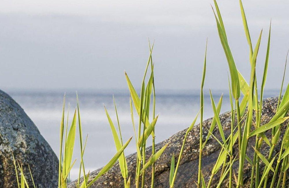 Ostsee Impressionen