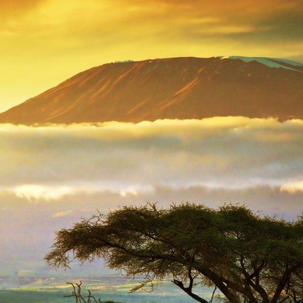 Amboseli Kilimanjaro
