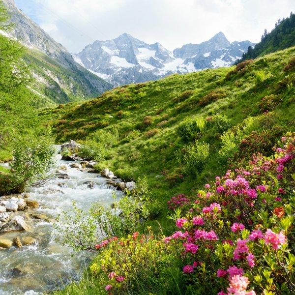 Gebirgsfluss in Tirol